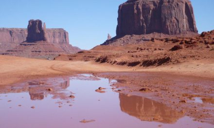 USA West Coast Road trip – Part 3: Kayenta, Monument Valley, Natural Bridges, Goblin Valley, Bryce Canyon
