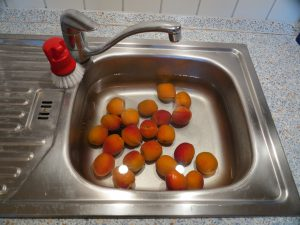 Aprikosen Marmelade -Aprikosen waschen